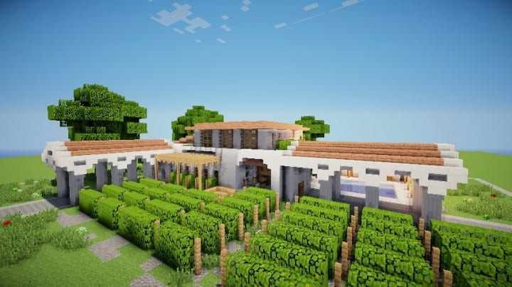 Grapes Mediterranean WineStore vinyard farm modern minecraft building