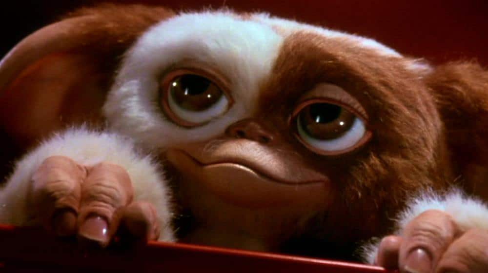 gizmo gremlins so cute