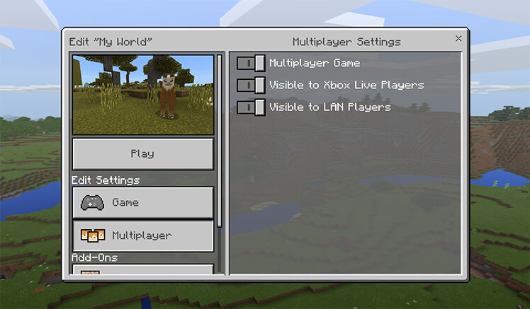 minecraft multiplayer settings