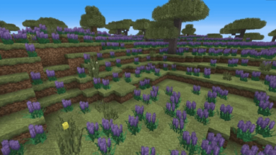 Photo of Sheng Ling Resource Pack – World Enhancer