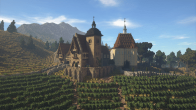 Photo of Rich Medieval Vineyard
